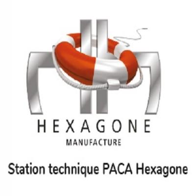 Location robot HEXAGONE Peps 200 #2